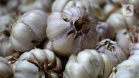 Aktivitas pedagang bawang putih di Pasar Induk Kramatjati, Jakarta Timur, Rabu (5/2/2020). Kelangkaan pasokan bawang putih di dalam negeri berimbas tingginya harga komoditas tersebut yang mencapai kisaran Rp 57.500/kilogram. (merdeka.com/magang/ Muhammad Fayyadh)