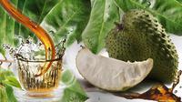 Bukan cuma buahnya saja yang enak di makan, tapi daun sirsak ternyata juga sangat bermanfaat untuk kesehatan tubuh kamu lho. (Foto: YouTube.com)