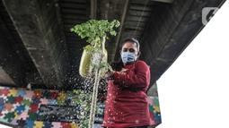 Warga melakukan perawatan taman sayur di kolong flyover Cipinang, Jakarta, Senin (1/2/2021). Selain sayur seperti sawi dan kangkung, taman ini juga dilengkapi kolam ikan yang hasil panennya untuk dikonsumsi oleh warga sebagai program ketahanan pangan. (merdeka.com/Iqbal S. Nugroho)