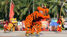 Penari Barongsai beraksi menghibur pengunjung Pantai Lagoon, Ancol, Jakarta, Sabtu (2/2). Untuk menyambut perayaan Imlek 2570, pengelola menampilkan Ancol Imlek Festival 2570. (Liputan6.com/Helmi Fithriansyah)