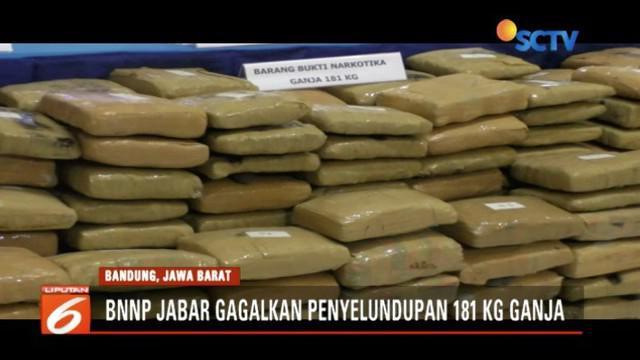 BNNP Jabar ringkus lima kawanan pengedar ganja seberat 181 kilogram.