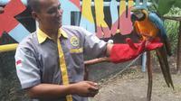 Jogja Exotarium Sleman, kebun binatang mini di Sleman yang tidak hanya memperlihatkan beragam hewan, namun juga memberikan edukasi kepada pengunjung (Liputan6.com/ Switzy Sabandar)