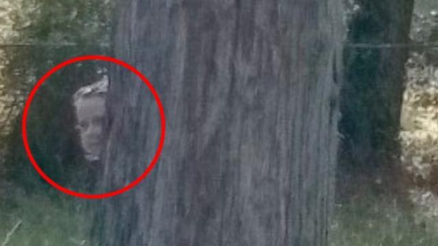 Pria Ini Temukan Sosok Tak Terduga Saat Buka Google Maps di Pemakaman