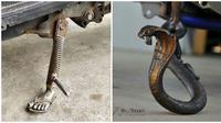 Modifikasi Nyeleneh Standar Motor dengan Beragam Bentuk Ini Absurd Abis (sumber:otosia.com)