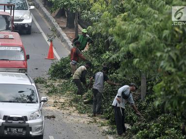 Kendaraan melintas saat petugas Suku Dinas Kehutanan Jakarta Timur menebang pohon di pinggir Jalan I Gusti Ngurah Rai, Jakarta, Rabu (25/7). Penebangan dilakukan untuk mengantisipasi terjadinya pohon tumbang. (Merdeka.com/Iqbal Nugroho)