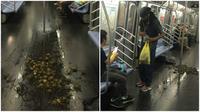 Tidak jelas bagaimana tumpukan lebih dari 50 ekor kepiting bisa ada dalam gerbong kereta bawah tanah New York. (Sumber Brian Slepian via Gothamist)
