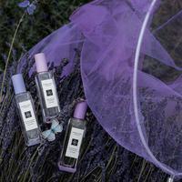 Lavenderland, 3 paduan keharuman lavender dalam rangkaian koleksi terbatas.