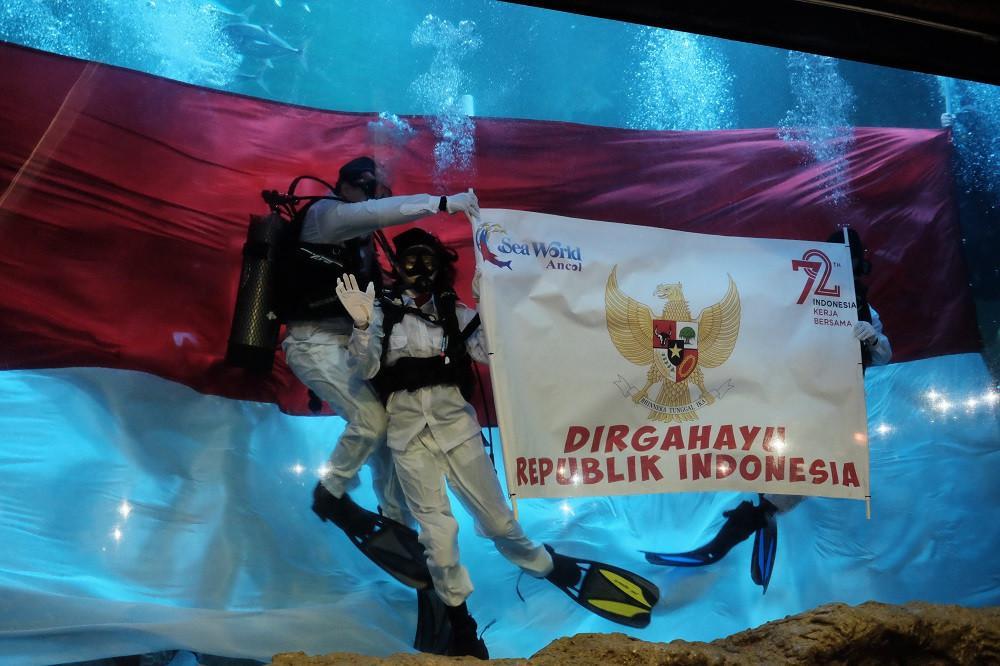 Seawolrd Ancol mengadakan pengibaran bendera saat 17an di bawah air