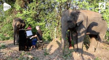 Gajah ternyata memiliki selera terhadap musik klasik, reaksinya unik saat alunan musik diperdengarkan.