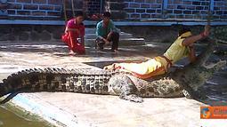Citizen6, Badung: Taman buaya ini dikenal dengan nama Reptile and Crocodile Park yang beralamatkan di Banjar Binong, Desa Werdi Bhuwana, Kec. Mengwi, Kab. Badung. (Pengirim: Munanjar)