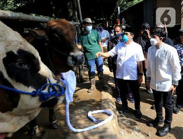 Distribusi Daging Qurban Atasi Warga Terdampak PPKM