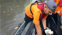 Nelayan hilang  di sungai ditemukan tinggal potongan kaki kanan oleh tim SAR. (Liputan6.com/Ahmad Akbar Fua)