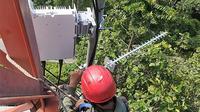 XL Axiata mengujicobakan solusi broadband Huawei RuralStar Pro di daerah terpencil di Kalimantan (Foto: XL Axiata).