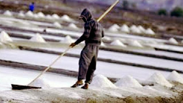 Petani Garam Jeneponto Batal Rasakan 'Bulan Madu'