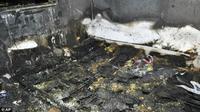 Kebakaran, Balita Tewas dengan Seekor Anjing di Sampingnya