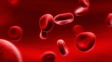 Kesadaran Hemofilia di Indonesia Masih Minim