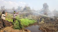 Polisi memadamkan kebakaran hutan dan lahan di Kabupaten Pelalawan beberapa waktu lalu. (Liputan6.com/M Syukur)