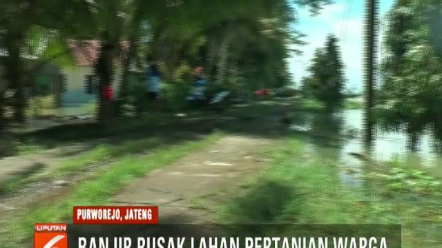 Banjir yang terjadi akibat luapan Sungai Ireng ini pun masih meredam permukiman warga dengan ketinggian satu hingga dua meter.