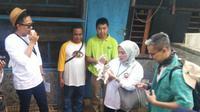 Kelinci di The Learning Farm di Cianjur, Jawa Barat. (Liputan6.com/Henry)