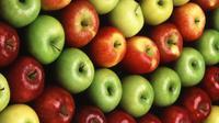 Apa saja camilan sehat yang bisa dikonsumsi saat diet?