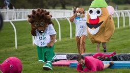 Seorang peserta terjatuh saat mengikuti lomba lari dalam acara Mascot Gold Cup tahunan ke-13 di Wetherby Racecourse, Inggirs (29/4). Yang unik, peserta mengenakan kostum badut saat mengikuti lomba lari ini. (AFP/Oli Scarff)