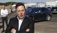 Elon Musk.  (Britta Pedersen / POOL / AFP)
