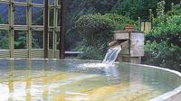 Air panas alami untuk kolam pemandian. Karena hotel ini terpencil di alam liar, para tamu bisa sejenak terbebas dari kehebohan kehidupan perkotaan. Tak ada internet di sana. (Sumber traveldreamscapes.wordpress.com)