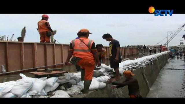 Akibat banjir rob ini, ketinggian rumah mencapai 40 hingga 50 sentimeter. Warga Luar Batang juga tergenang akibat kebocoran tanggul.