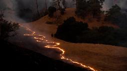 Kobaran api menjalar kawasan Sonoma, California, Amerika Serikat, Sabtu (26/10/2019). Kebakaran telah menghanguskan ribuan hektare lahan. (AP Photo/Nuh Berger)