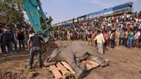 Gajah mati terlindas (Reuters)