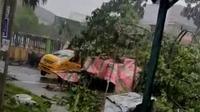 Hujan deras disertai angin kencang, Senin (28/6/2021) sore sebabkan 2 pohon yang berada dekat Rumah Sakit Umum Pusat (RSUP) Haji Adam Malik tumbang dan menimpa 1 unit angkot dan 1 mobil pribadi