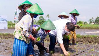 Menko Airlangga Ingin Petani Milenial Bantu Tingkatkan Ketahanan Pangan