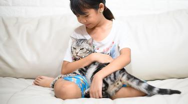 Anak dan Kucing