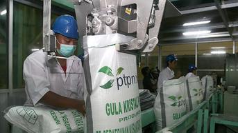 Restrukturisasi Bisnis Holding PTPN Bakal Bawa Indonesia Swasembada Gula