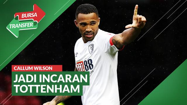 Berita Video Bursa Transfer: Tottenham Hotspur Incar Pemain Bournemouth, Callum Wilson
