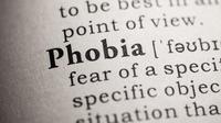 Fobia, Gangguan Kecemasan yang Memunculkan Rasa Takut Berlebihan Ini Bisa Disembuhkan (Ilustrasi/iStockphoto)