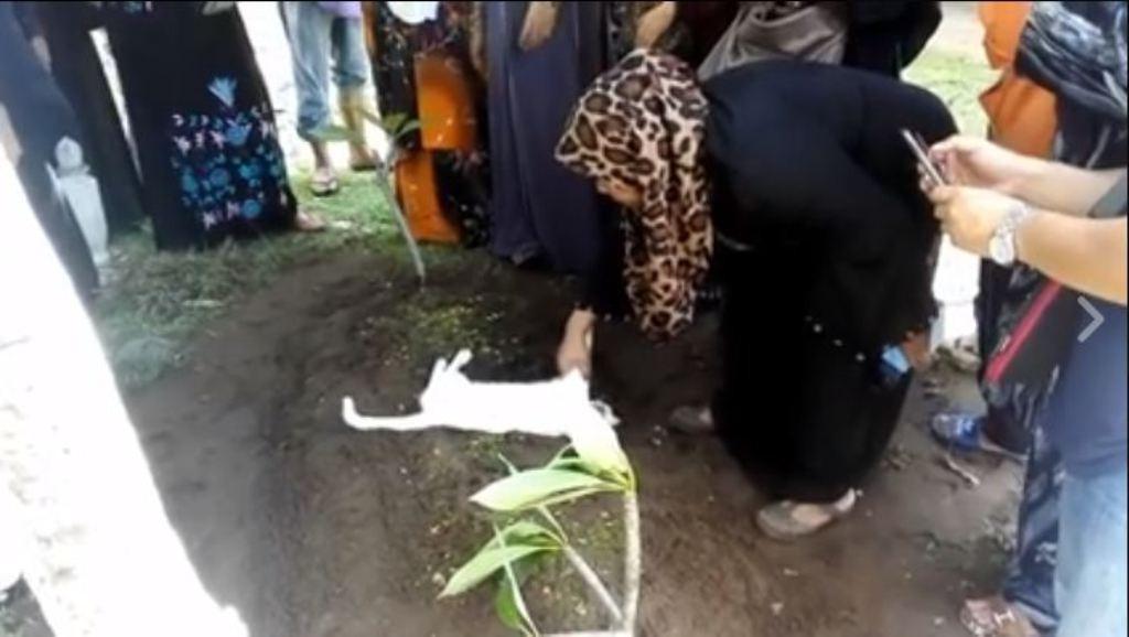 Kucing ini tak mau meninggalkan kuburan, videonya yang viral bikin semua orang yang melihatnya menitikan air mata. (Facebook)