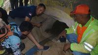 Tiga penggali lubang diduga menyimpan harta karun Bung Karno meninggal. Yang menyuruh mereka sehat wal afiat. (Liputan6.com/Dian Kurniawan)