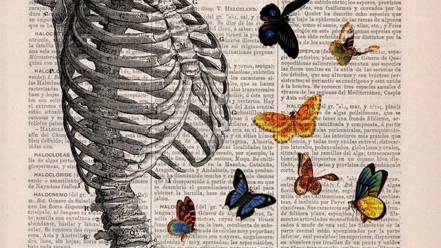 [Bintang] 10 Ilustrasi Anatomi Tubuh Motif Bunga yang Digores di Buku Tua