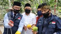 Menteri Koperasi dan UKM Teten Masduki mengunjungi Koperasi Pondok Pesantren Al Ittifaq di kawasan Ciburial, Bandung, Minggu (21/6/2020). (Dok Kemenkop)