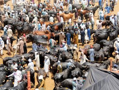 Orang-orang mengunjungi pasar ternak menjelang Hari Raya Idul Adha, atau Hari Raya Kurban, di Peshawar, Pakistan barat laut, (17/7/2020). (Xinhua/Saeed Ahmad)