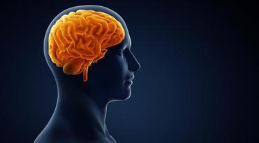9 Penyebab Pendarahan Otak yang Dialami Tukul Arwana, Kenali Gejalanya