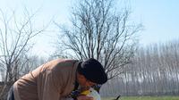 Recep Mirzan (63) berbagi momen dengan Garip, seekor angsa betina, saat mereka berjalan-jalan di pinggiran Karaagac, di provinsi Edirne barat Turki, 6 Februari 2021. Pensiunan tukang pos tersebut bersahabat dengan angsa yang pernah dia selamatkan 37 tahun yang lalu. (AP Photo/Ergin Yildiz)
