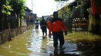 Selain rumah juga terdapat 2.743 hektar sawah yang terendam banjir sejak beberapa hari kemarin.
