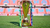 Ilustrasi Piala AFF. (Bola.com/AFF Suzuki Cup)