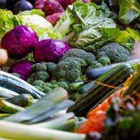 Ilustrasi sayur dan buah. (dok. pexels.com/Magda)