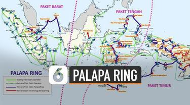Proyek Palapa Ring telah muncul sejak 2007 namun terbengkalai.