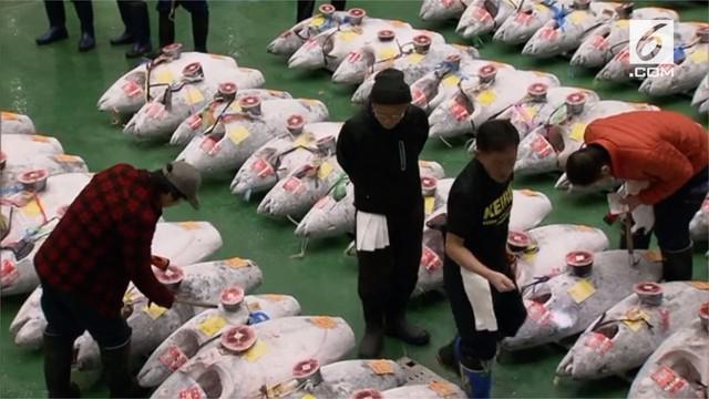 Ikan tuna jenis sirip biru dilelang dengan harga fantastis. Ikan ini dijual senilai USD 3 juta atau sekitar Rp.43 miliar.