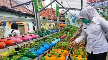 Pemukiman Kumuh di Palembang Disulap Jadi Kampung Sayur yang Asri