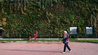 Francesco Bollani, seorang arsitek dari Italia berhasil membuat taman vertikal untuk mengatasi keterbatasan lahan. (Foto: Dailymail)